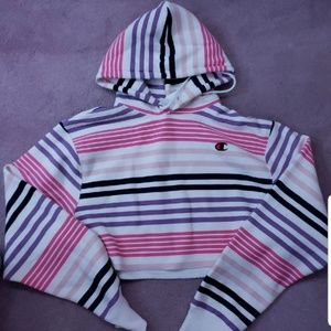 BNWT UO STRIPED CHAMPION CROPPED HOODIE
